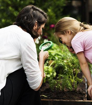 Mito ou verdade: conversar com as plantas ajuda no crescimento delas?