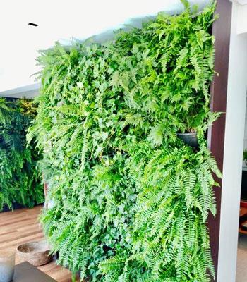 Jardins suspensos são tendência que devolvem o verde ao cenário urbano