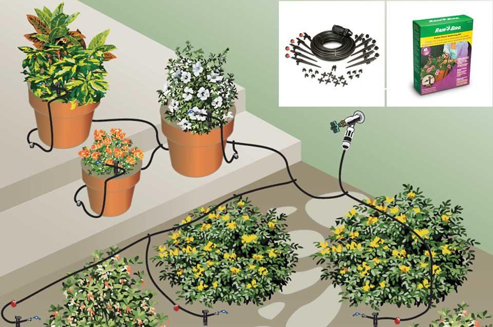 https://www.regatec.com.br/wp-content/uploads/2019/08/Kit-de-irrigação-10-vasos.fw_-960x638.jpg